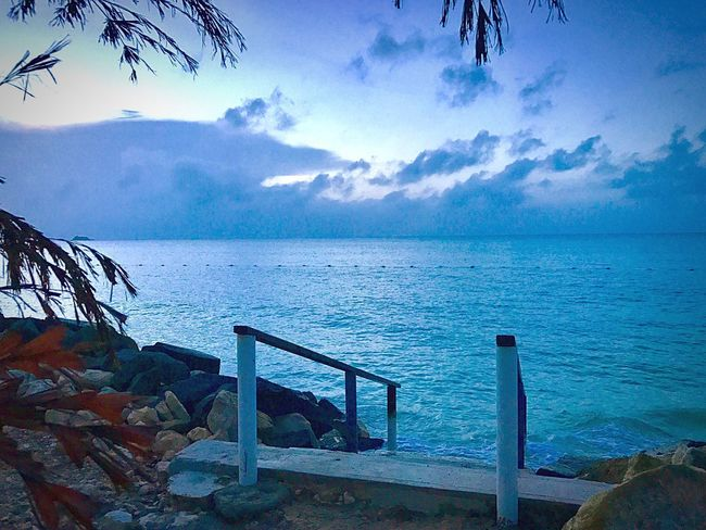 JeanneRotaMatthews Sea Horizon Over Water Water Sky Beauty In Nature Railing Scenics Tranquility Nature Tranquil Scene No People Day Outdoors Tree EyeEm Gallery Favorite Time Of Day EyeEmCaribbean Pebble Beach Rock - Object Tranquility Beauty In Nature WeekOnEyeEm