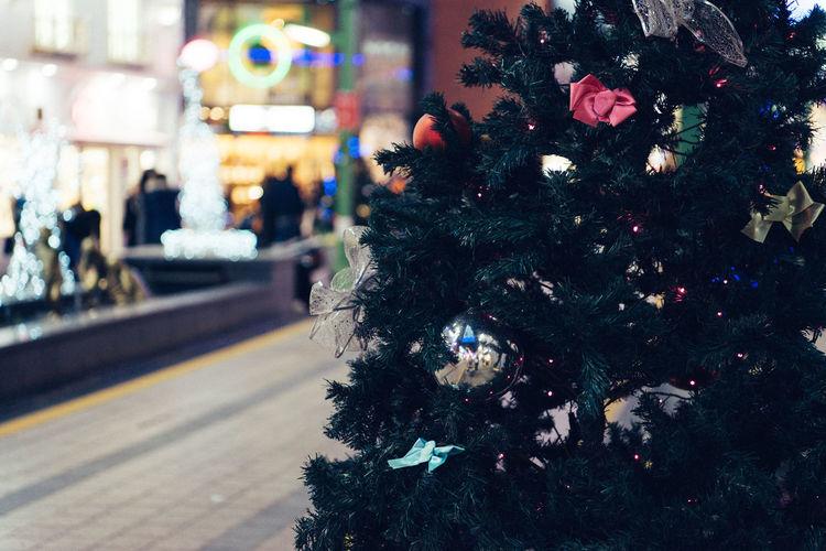 Christmas Holiday Celebration Christmas Decoration christmas tree Decoration Tree Illuminated Christmas Ornament Holiday - Event Celebration Event Christmas Lights Night Gift No People Focus On Foreground Close-up