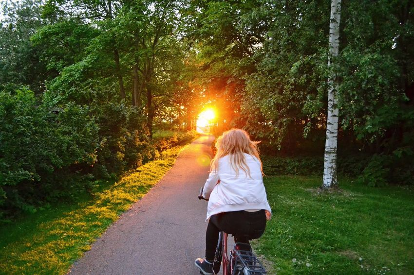Sommergefühle Bicycle Cycling Rear View Transportation Riding Leisure Activity Nature Real People Sunset Outdoors Lifestyles The Way Forward Summer Sunlight Bicycling Trip
