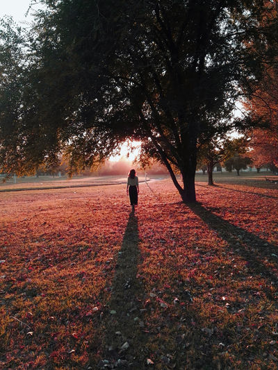 Rear view of woman standing on red grass during autumn. sunset light