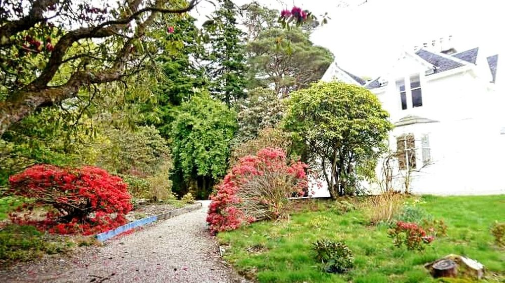 2010, Port Appin Flower Building Exterior Beauty In Nature Footpath Scottish Highlands Scotland Botanic Garden Port Appin