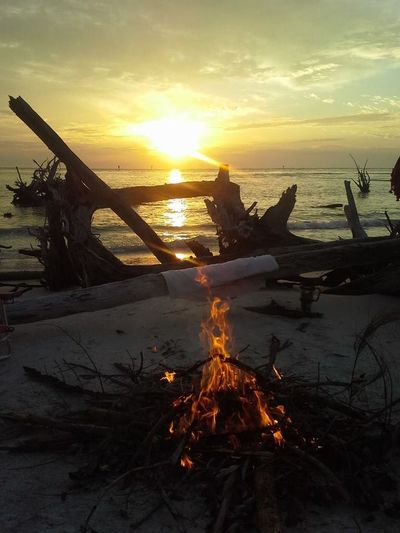 Beer Can Island Whitney Beach Bonfire Night Sun_ Collection