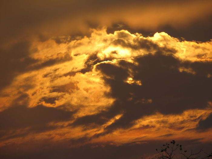 sunset clouds No Filter, No Edit, Just Photography Original Shot Copying Me Night Gold Colored Outdoors Nature Sky No People Beauty In Nature first eyeem photo