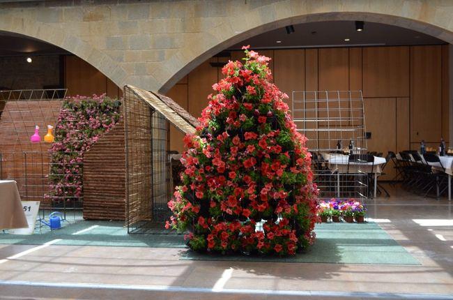 Festes I Tradicions Girona Temps De Flors 2014