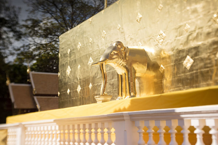 Wat Phra Singh(Lion Buddha), located inside the old city wall in Chiang Mai Chiang Mai Figure Gold Golden Pagoda Reflection Thailand Wall Wat Phra Singh Wat Phra Singh Woramahawihan Worship Architecture Art Art And Craft Bokeh Buddhism Decoration Elephant Fence Model Religion Sculpture Statue Sunlight Temple