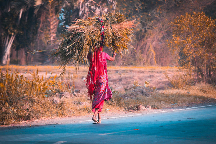 Woman carrying hay on head