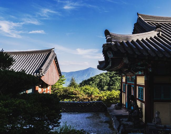 Architecture Built Structure Building Exterior Religion Place Of Worship Outdoors Sky Day No People Roof Tree Nature Temple Buddist Temple Buddhism Second Acts