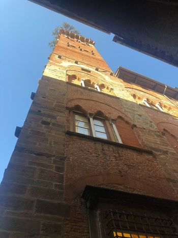 Guinigi tower Architecture Built Structure Low Angle View Building Exterior Building Sky Clear Sky Tower History Old