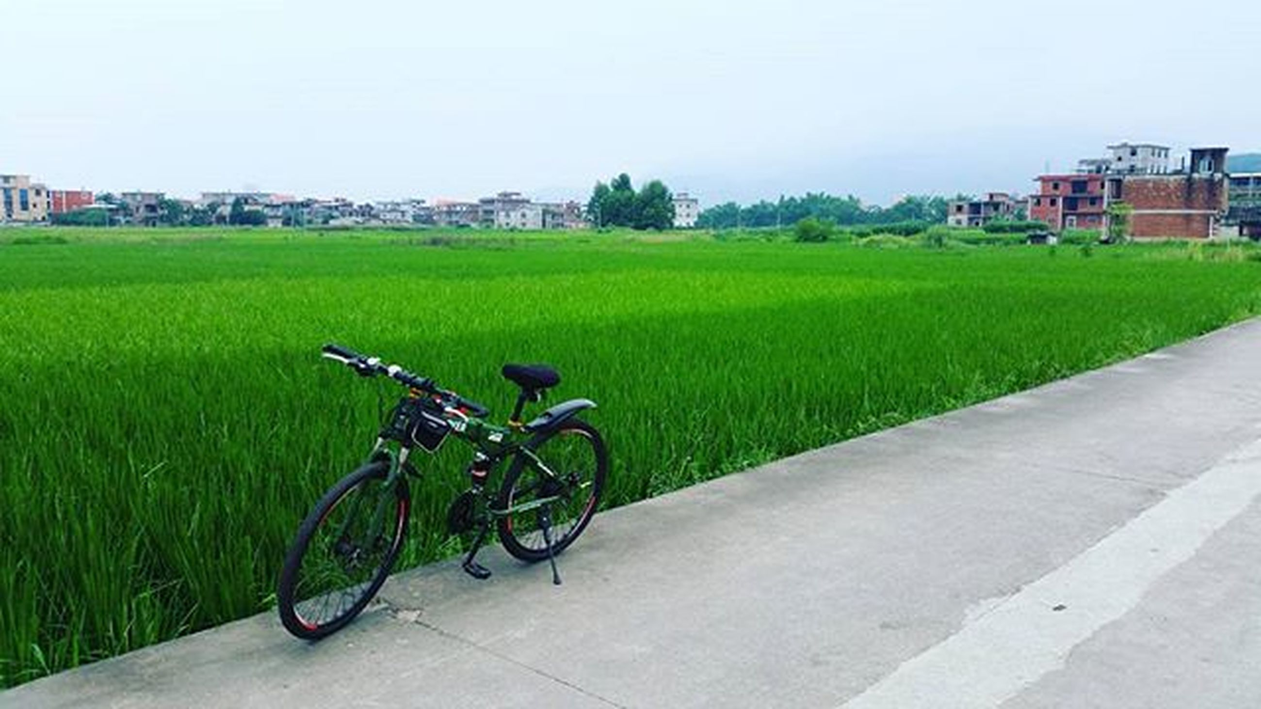 bicycle, transportation, land vehicle, mode of transport, grass, building exterior, parked, built structure, architecture, stationary, parking, green color, clear sky, road, copy space, field, street, day, city, outdoors