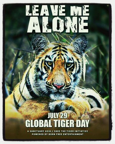 Its the Leavemealone Sanctuaryasia tiger campaign - join in and help save the tiger !! why not sign a petition & become his voice !!!
