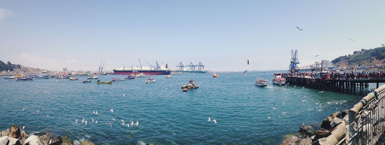 Puerto de San