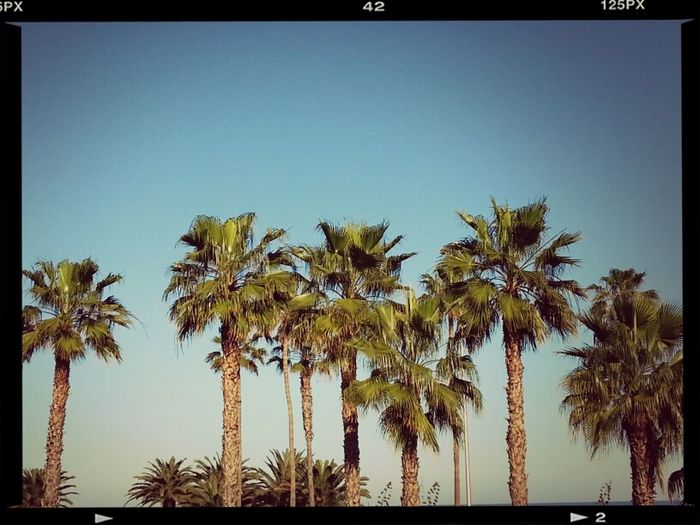 Like California.