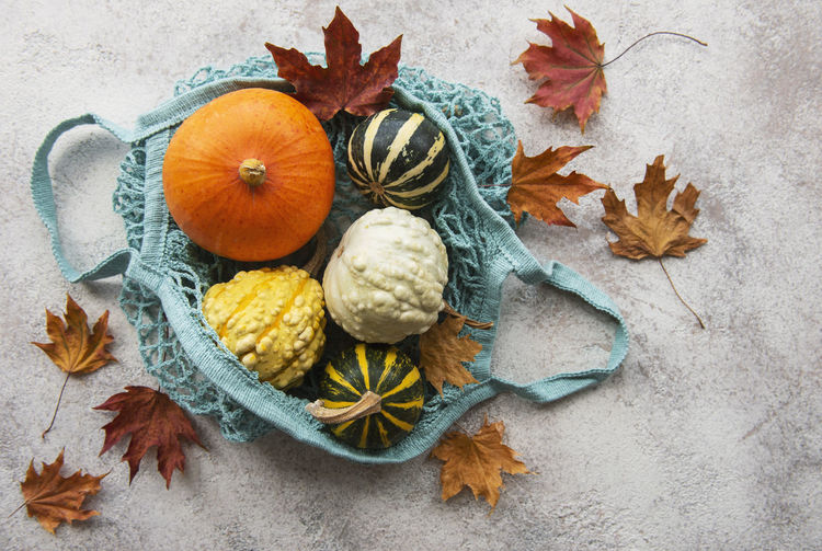 High angle view of pumpkins on plant during autumn