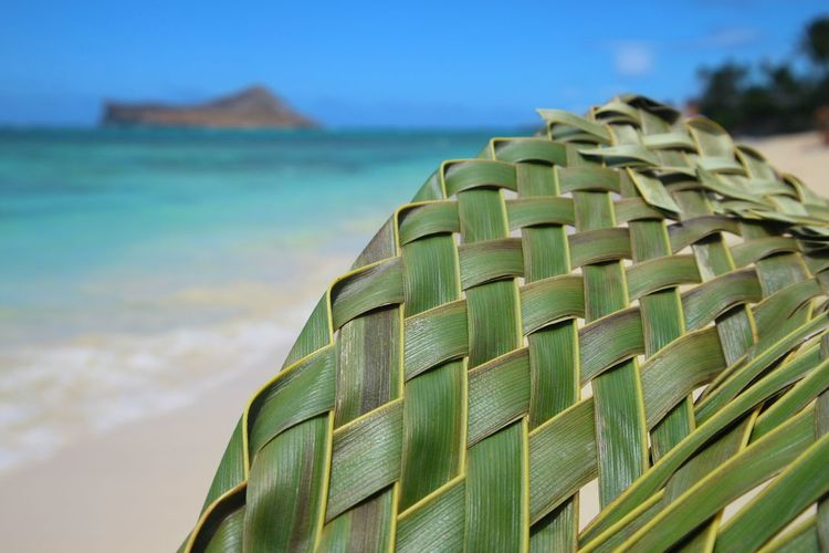 Weaving Leaf No People Enjoying The Moment Nature EyeEm Nature Lover Eyeemphotography CaptureTheMoment Beach Sunlight Summer Water Nature Sky Sea Palm Leaf Outdoors Gift Blue Sky And Clouds Taking Photos Landscape Photography EyeEm Best Shots EyeEm Gallery Blue Beauty In Nature Close-up