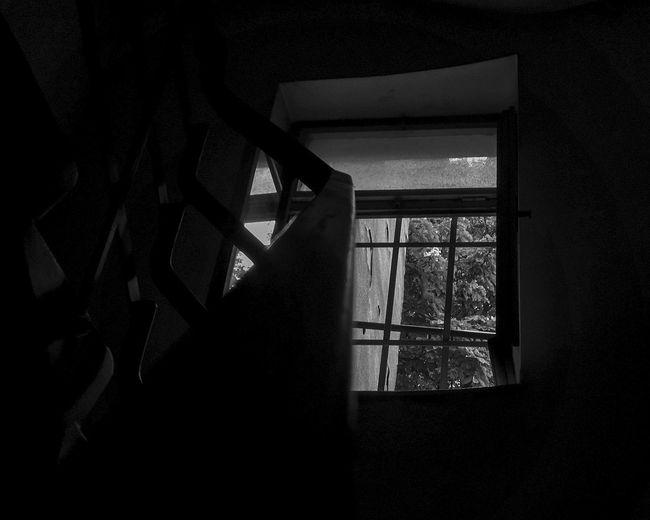 """""""Dark window"""""""