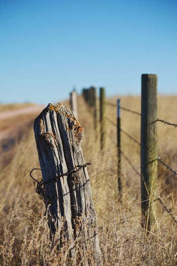 Old and new fence Sunlight Shadow Focus On Foreground Blurred Background Rural Scene In The Distance Wooden Posts Clear Sky Barbed Wire Sky Close-up