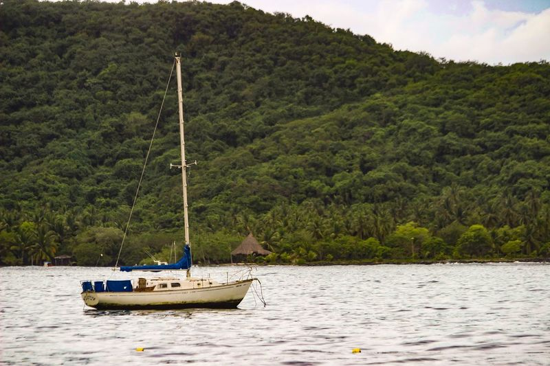 Nautical Vessel Nature Beauty In Nature Tree Tranquility Outdoors Mode Of Transport Scenics Transportation Sea Tranquil Scene Sky Sailing Day No People Landscape Water Mountain Sailboat Horizontal Rickeherbertphotography Travel Photography Been There.