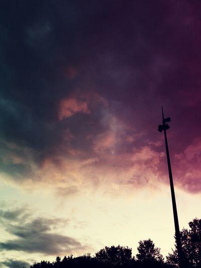 Tree Sunset Silhouette Sky Cloud - Sky