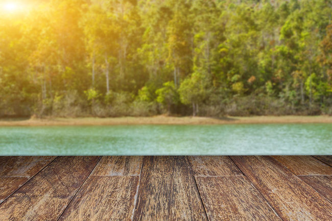 Empty wooden floor and blurred forest on water lake and sunlight background. Beautiful EyeEm Best Shots EyeEm Nature Lover EyeEm Selects EyeEm Gallery EyeEmNewHere Sunlight Temples Tree Backgrounds Beauty In Nature Beauty In Nature Design Forest Green Leaf Green Leaves Lake Nature Outdoors Pattern Sunset Tree Water Water Lake Wood - Material