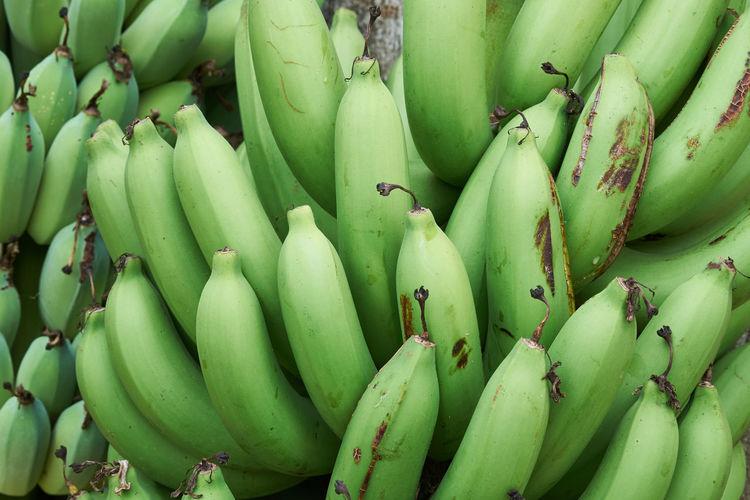 Agriculture Banana Bing Bunch Farming Food Green Healthy Nature Organic Plantation