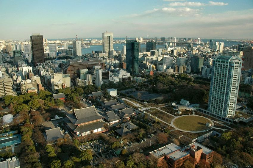 Taking Photos from above Tokyo Tower From My Point Of View 増上寺 Zojoji Zoujouji ランボーブリッジ View From Above Bird's Eye View Cityscapes Urban Geometry Tokyo Tokyo Bay Japan Scenery Travel Photography Seeing The Sights