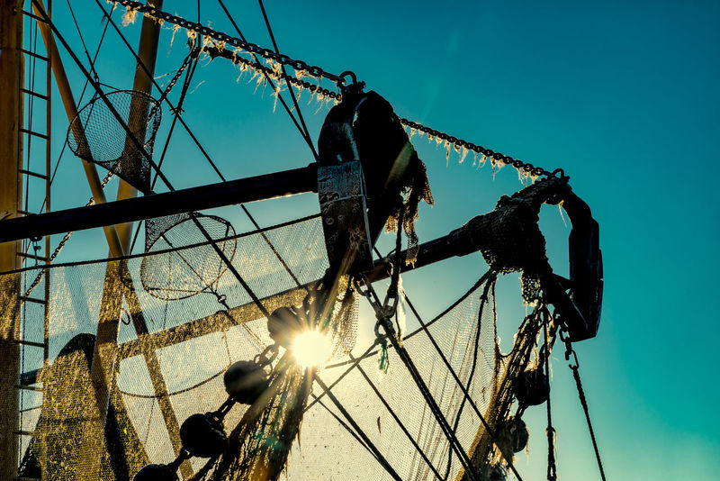 fishnet at fishing cutter Backlighted Photo Day Fishing Fishing Cutter Fishingnet Fishnetcrane Outdoors Sky