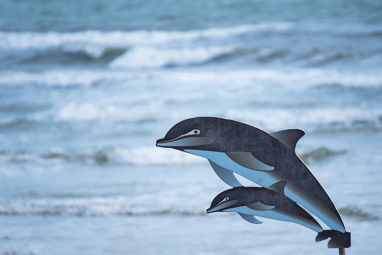 Two wooden dolphin drawings jumping and beautiful seascape with deep ocean waters.Thailand Animal Animal Themes Animal Wildlife Animals In The Wild Beauty In Nature Bird Day Focus On Foreground Marine Motion Nature No People One Animal Outdoors Sea Underwater Vertebrate Water Wave