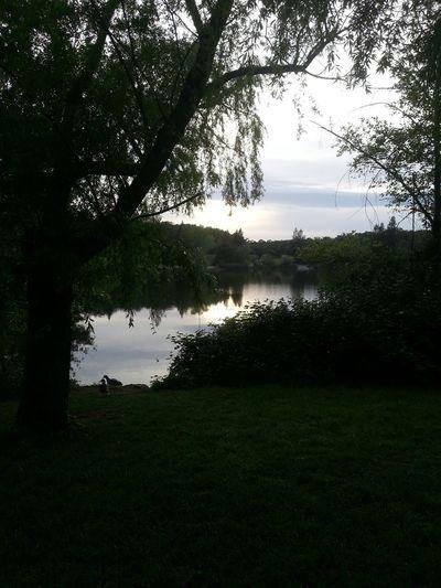 Beautiful sunset by the lake