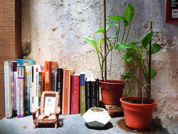 书 Book Book Library Relaxing Cafe Chair Wood Quiet Moments Reading Light And Shadow Sun Light Reflection IPhoneography Green Grass
