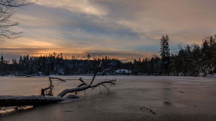 Sonnenaufgang bei Minus 12 Grad am Bergsee in Bad Säckingen Beauty In Nature Black Forest Blue Blue Sky Cloud - Sky Clouds Cold Temperature Day Frozen Lake Landscape Nature No People Outdoors Scenics Schwarzwald Sky Snow Sunrise Sunrise_sunsets_aroundworld Tree Winter