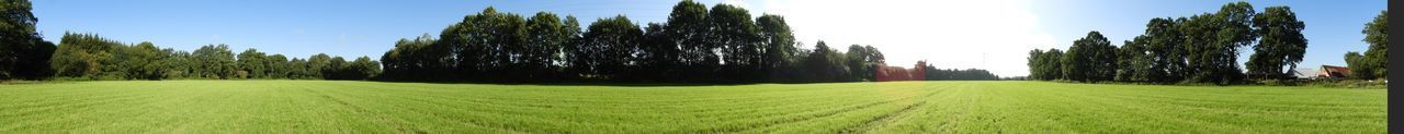 Summer memories in Hoogstede Germany Panorama Panoramic Photography Taking Photos Taking Pictures Eye4photography  EyeEm Nature Lover EyeEm Best Shots EyeEm Selects Nature Nature_collection Grassland Grass Clouds And Sky Clouds Agriculture Field Growth Farm Rural Scene Crop  Cultivated Land Landscape Green Color Nature Beauty In Nature Tree Tranquil Scene Tranquility Scenics Day Panoramic No People Outdoors Sky