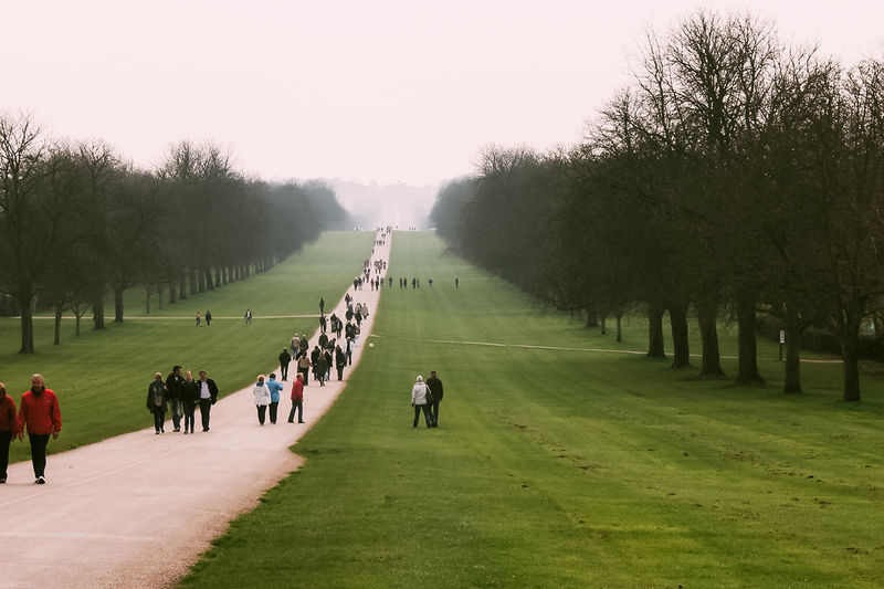 The Long Walk at Windsor Castle British Day Diminishing Perspective England Field Footpath Garden Grass Great Britain Heritage Landscape Leisure Activity Mist Nature Outdoors Sky The Long Walk Travel Travel Destinations Tree Uk Wanderlust Windsor