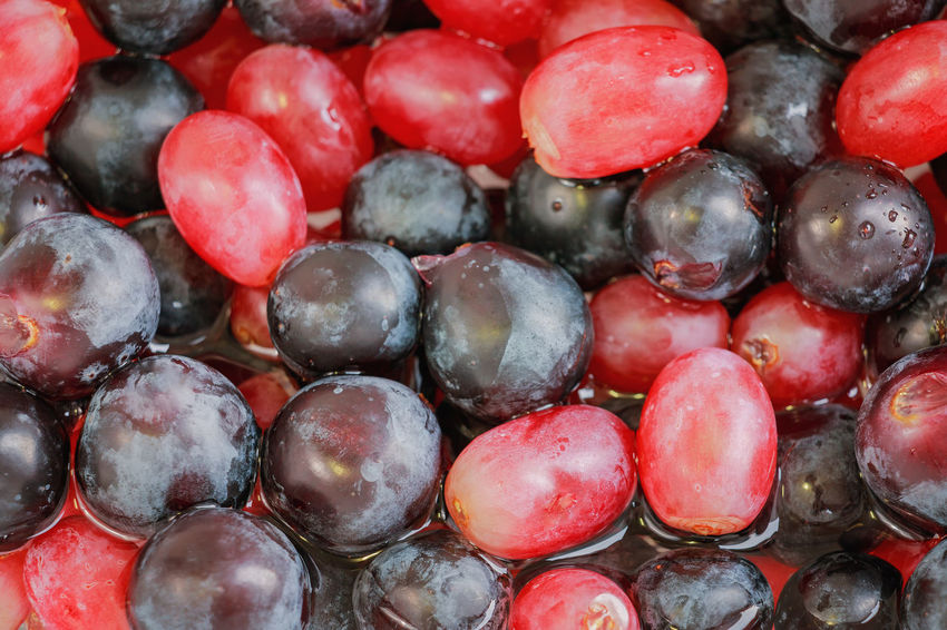 colorful grape background. Cleaning Colors Backgrounds Bunch Calorie Close-up Cluster Colorful Diet Food Food And Drink Freshness Fruit Grape Group Health Healthy Healthy Eating Nourishment Nutriment Nutrition Red Sweet Wash Water