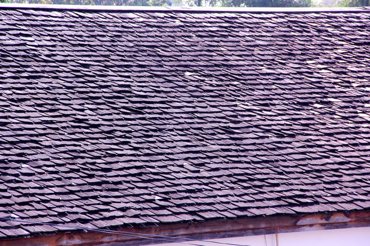 Wooden Tiles roof in Thailand Roof Tile Morning Thailand Living Wooden Wooden Roof Tree Sky Nature Safety Healthcare Healthy Autumn Water Summer Holiday Home Wallpaper Simple Happiness Rainy Season Travel Pattern Full Frame Backgrounds No People Day Indoors  Close-up