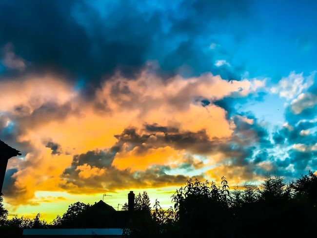 Cloud - Sky Sky Silhouette Tree Sunset Beauty In Nature Plant Nature Sunlight Outdoors Scenics - Nature Orange Color Architecture Low Angle View Dramatic Sky