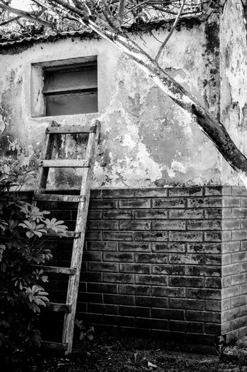 Rincón Window Stairs Abandoned Places B&w Corner Architecture Building Exterior Built Structure Close-up Deterioration