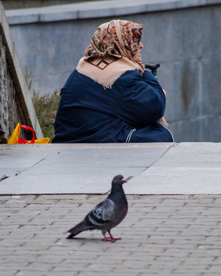 Rear view of woman sitting on footpath
