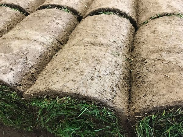Turf SOD Rolled Sod Grass Greensward Laying Stack Agriculture Grass Hay Bale Grass Bale Bale  Garden Gardening No People High Angle View Soil Full Frame Outdoors Nature Earth Close-up Working Garden Photography Plant