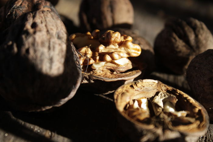 NUTS Nuts Nutshell Dryfruits EyeEm Selects Selective Focus Close-up No People Nature Day Outdoors EyeEm Ready