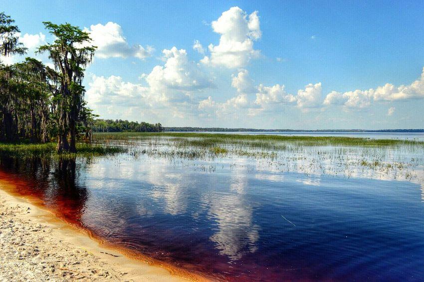 Lake Louisa Lake View Lakeside Sky And Clouds Enjoying Life Hanging Out Florida Life Florida Clermont Love