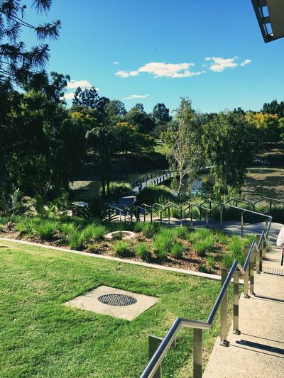 The university of Queensland MySchool Colours