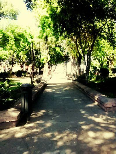 Walking Around Taking Photos Moments Mi Mexico Querido