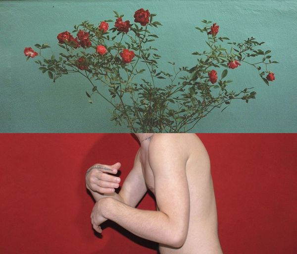 Image Montage Of Shirtless Man And Flowering Plants Against Wall