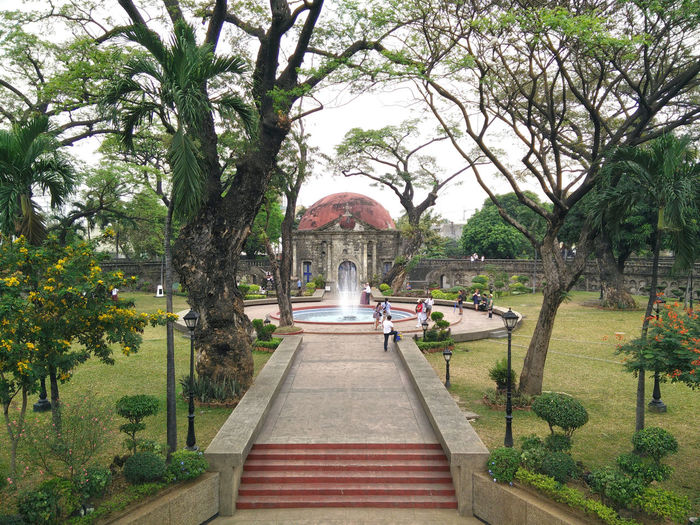 Architecture Built Structure Chapel Day Dome History Nature Outdoors Paco Park Philippines Tree Wedding