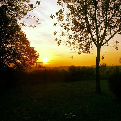 Gdynia Igersgdansk Igersgdynia Trojmiasto sunset basket fall