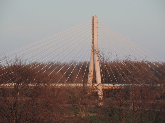 Bridge Sky