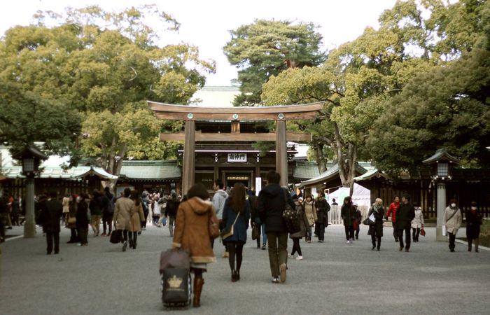 Japan Japan Photography Traveling Walking Around Temple Canon 50mm Enjoying Life Tokyo Travel Photography Ultimate Japan