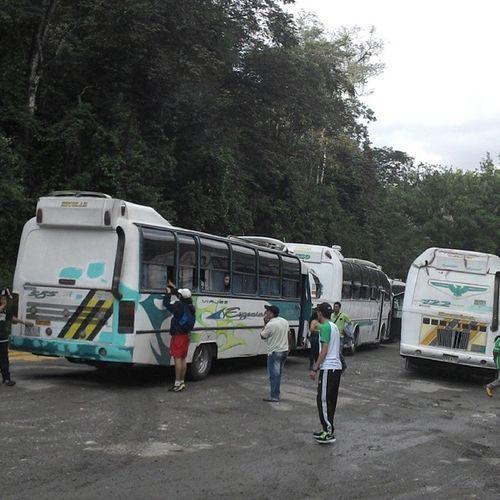 Bogotaverdolaga Atlnacional Ultras Ultrastyle