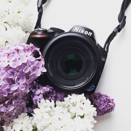 Nikon D3200 Nikon Nikonphotography Nikonphotographer Nikon Photo Flower's Photographer JuliaVidyapina JReshetnyаk Россия цветы весна фото