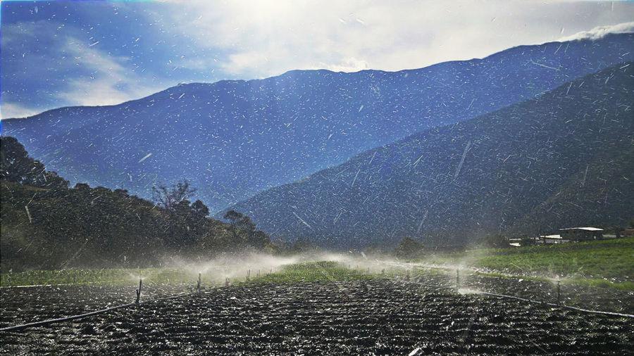 Agricultural Sprinkler Spraying Water On Field